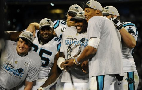 Panthers win puts Super Bowl 50 in the horizon