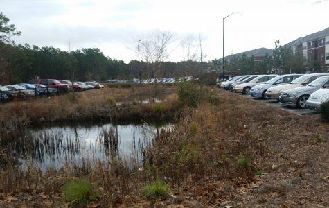 Cars broken into at Seahawk Landing residence area parking lot