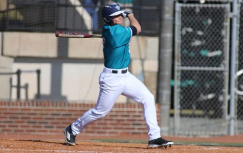 Preview: Diamond Hawks yet again facing elevated expectations
