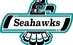 UNCW hockey set to begin spring schedule