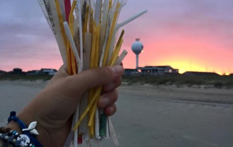 Used straws collected during a beach sweep. Courtesy of UNCW Plastic Ocean Project.