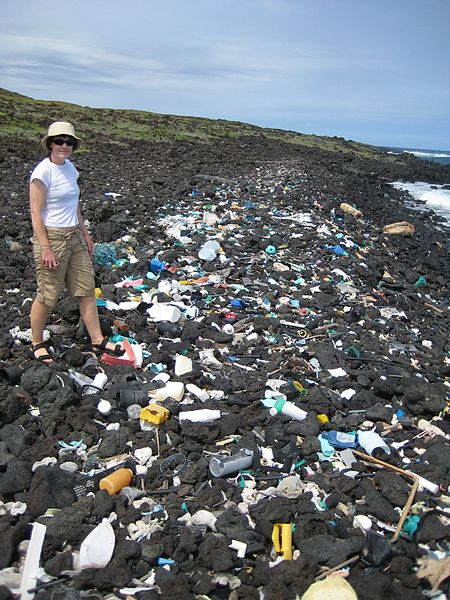Plastic trash litters a beach in Hawaii in 2008.