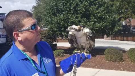 Cape Fear Raptor Center handler Randy Atkinson, left, and Stormy the osprey