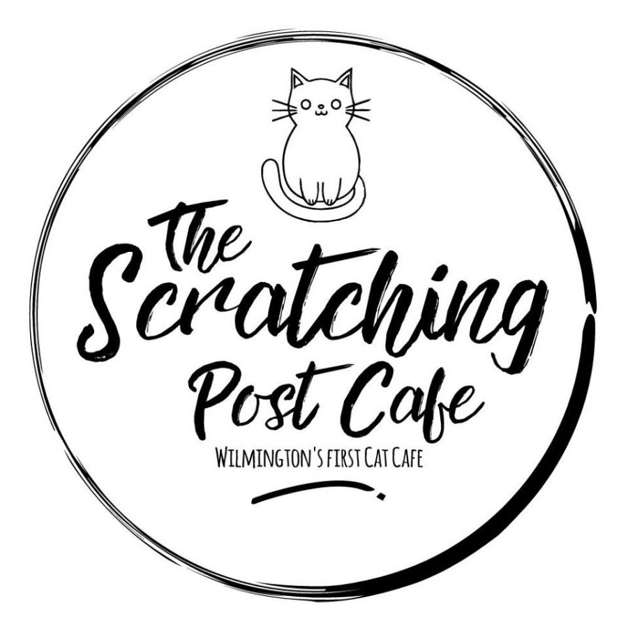 Grab a coffee, rescue a kitten: Wilmington's first cat cafe