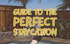 The Seahawk's Declassified Staycation Survival Guide