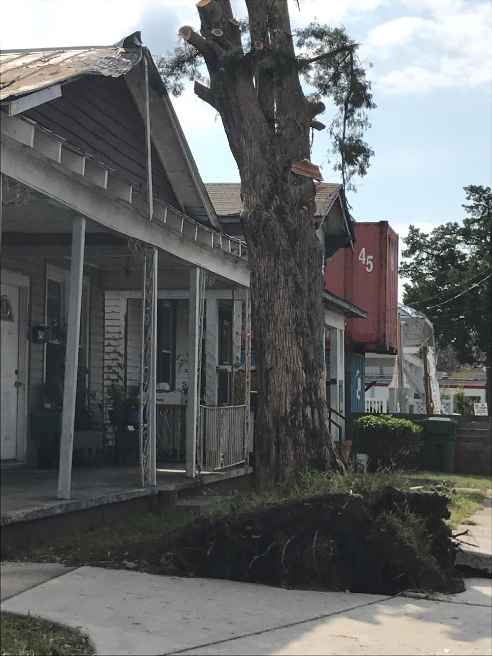 Uprooted+tree+in+downtown+Wilmington+along+Market+St.