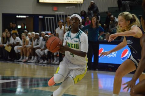 UNCW inducts four into Athletic Hall of Fame