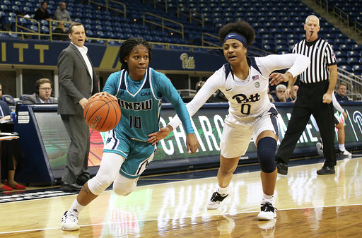 Dec 18, 2018; Pittsburgh, PA, USA;  The UNC Wilmington Seahawks women's basketball team plays the Pittsburgh Panthers at the Petersen Events Center. Mandatory Credit: Charles LeClaire