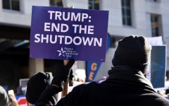Partial federal government shutdown continues into its fourth week