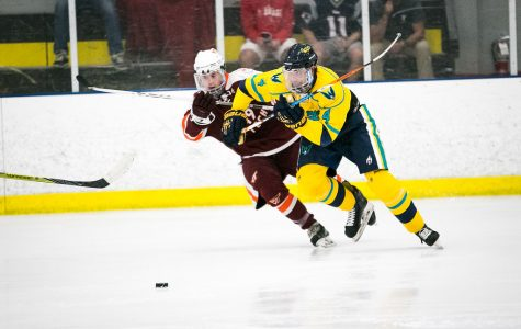 'Icehawks' hope to skate off recent skid