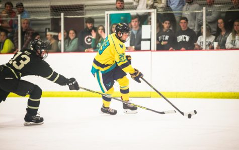 'Icehawks' skate into match with UNC Charlotte