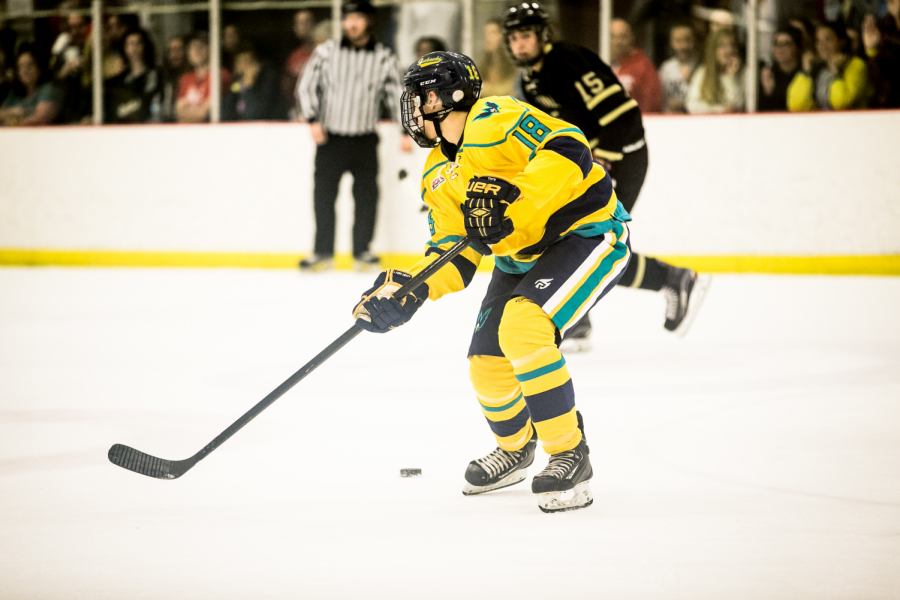 Hockey season concludes against Duke