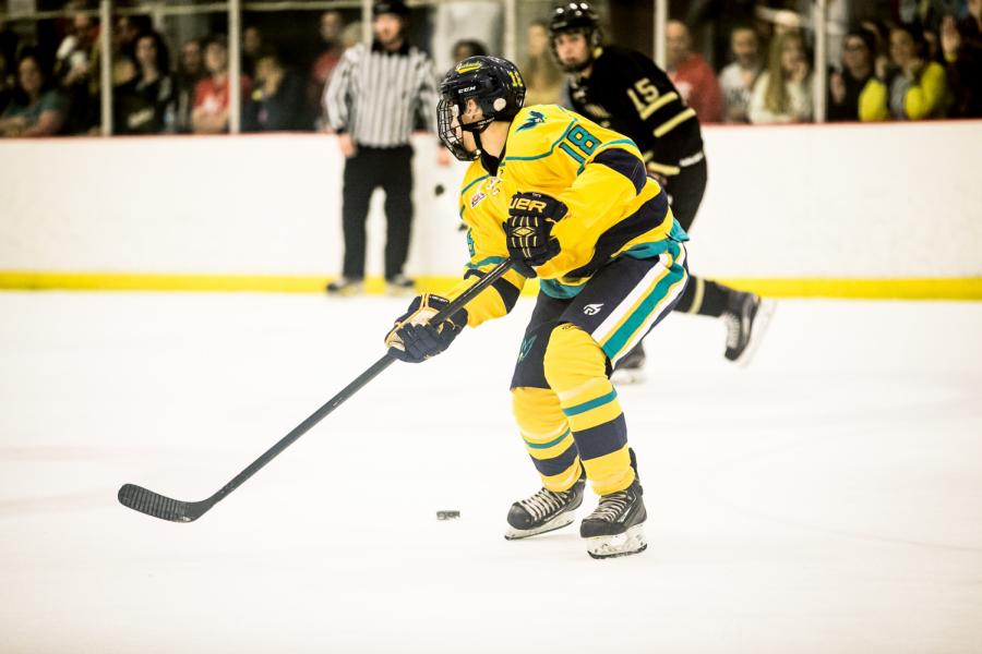 'Icehawks' pick up first win of season
