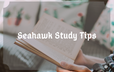 Seahawk study tips for exam week