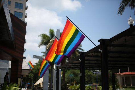 During Pride Month in St. Petersburg, rainbow flags fly in front of local businesses or in shop windows.