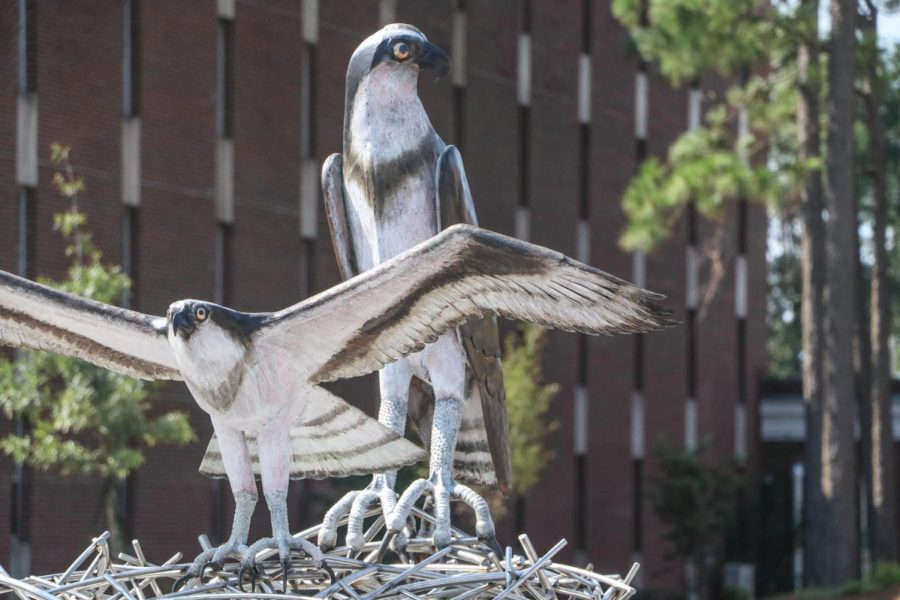 The new seahawk sculpture displayed near Pelican and Sandpiper Halls.