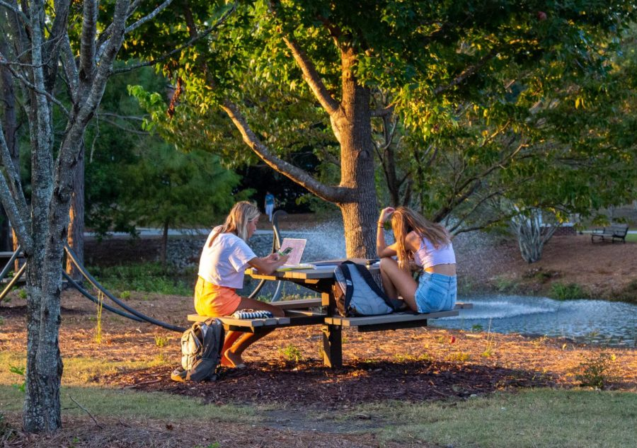 UNCW students study by the fountain.