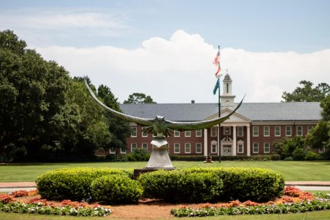 The Seahawk statue on UNCW campus.