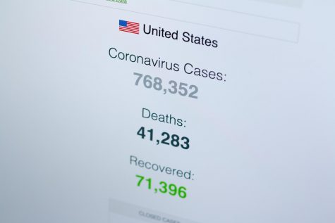 Coronavirus / Covid-19 cases in the United States. (20.04.2020) Source: www.worldometers.info/coronavirus