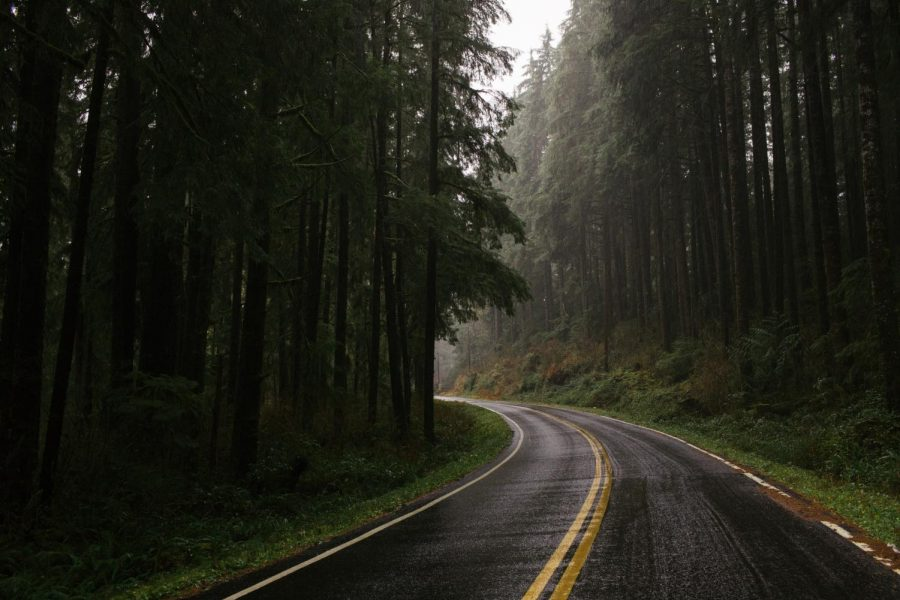 Winter break plans: a road trip through North Carolina