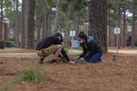 The Gardening club and the 350 club want UNCW to divest from fossil fuels