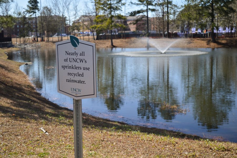 The UNCW pond next to the Student Recreation Center.
