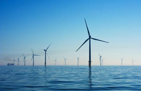 An offshore wind farm.